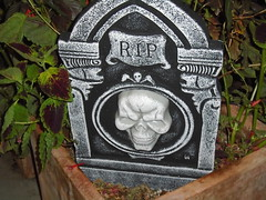 DSC03098 (classroomcamera) Tags: home house rip grave stone gravestone headstone cemetery dead death skull skulls dark spooky scary black white grey rock plastic green leaves plants bushes front frontyard display decoration decorations halloween holiday spirit
