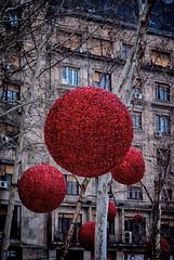 no comment (3OPAHA) Tags: red christmas belgrade sony explore