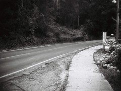 Footpath; Mount Dandenong Tourist Road (Matthew Paul Argall) Tags: jcpenneyelectronicstrobepocketcamera 110 110film fixedfocus focusfree lomographyfilm subminiaturefilm grainyfilm blackandwhite blackandwhitefilm 100speedfilm 100isofilm road street mountdandenong mountdandenongtouristroad yarraranges