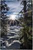 """""""Winter im Hochmoor"""" (anton_zach) Tags: moos mystisch moor sonne sonnenaufgang schnee steine stein sonnenstrahlen schneelandschaft himmel natur waldviertel wald wolken winter waldlandschaft holz hochmoor eis clouds color colors baum"""