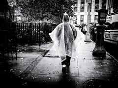 Rainwear (Feldore) Tags: newyork chinatown rain coat poncho transparent street candid feldore mchugh em1 olympus 17mm 18 rainy weather raining
