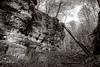 Bielstein Gorge (tewahipounamu) Tags: bielsteingorge bielsteinschlucht deutschland eastwestphalia egge eggegebirge forest germany gorge naturparkteutoburgerwaldeggegebirge owl ostwestfalenlippe rockformation teutoburgforesteggehillsnaturepark
