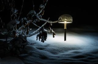 Warm Light on a Cold Night