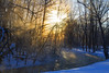 Friday! (Matt Champlin) Tags: friday tgif thaw winter beautiful cold arctic subzero frozen stream woods woodland peace peaceful sun sunbeams sunstar gorgeous nature landscape quiet calm canon 2018