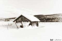 180109-45 Enfouie sous la neige (clamato39) Tags: noiretblanc blackandwhite bw monochrome grange barn charlevoix provincedequébec québec canada rural old