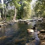 Chinnar Wildlife Sanctuary, Kerala thumbnail