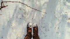 16.01.2018 (Fregoli Cotard) Tags: snow snowcrunch winterwalk walkingthesnow boots bootsinsnow deichman feetphoto myfeet iwalktheline snowapocalipse enjoywinter cuteboots grayboots brownboots winterstroll frozenfeet dailyjournal dailyphotography dailyproject dailyphoto dailyphotograph dailychallenge everyday everydayphoto everydayphotography everydayjournal aphotoeveryday 365everyday 365daily 365 365dailyproject 365dailyphoto 365dailyphotography 365project 365photoproject 365photography 365photos 365photochallenge 365challenge photodiary photojournal photographicaljournal visualjournal visualdiary 16365 16of365