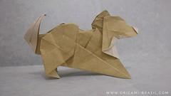 38/365 Shiba by Lu Hao (origami_artist_diego) Tags: origami 365days 365origamichallenge dog shiba paperfolding papiroflexia
