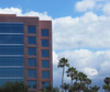 20180221 Office Building with Clouds and Palms (Dolores.G) Tags: 365the2018edition 3652018 day52365 21feb18