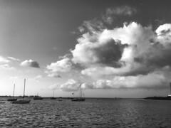 Key West FLA (dweible1109) Tags: skyscape landscape blackwhite bw iphone clouds water ocean gulfofmexico florida keywest