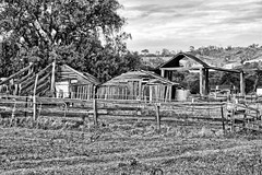 The old timber dairy. (Ian Ramsay Photographics) Tags: mounthunter newsouthwales australia camden dairy timber elements fate tin roofing generations family worked toiled survived