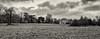 Bucolic Panorama (Stephen Reed) Tags: silverefexpro2 nikon d7000 lightroomcc surrey nationaltrust naturalbeauty winter landscape england