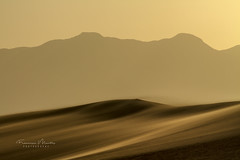 Wind in the Valley (Francisco Montes Jr.) Tags: 2014 7d california canon canon7d deathvalley deathvalleynationalpark francisco franciscomontes franciscomontesphotography mesquiteflatsanddunes montes arena desert desierto may mayo montañas mountains photography sand sanddunes