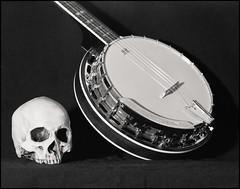 Vanité (Oeil de chat) Tags: naturemorte stilllife musique banjo crâne grandformat gf 4x5 argentique pellicule film foma cambo