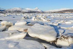 Ice at the shore (TerjeLM) Tags: ice is kvaløya lillegrindøy snow snø vinter winter