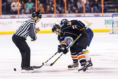 "Kansas City Mavericks vs. Toledo Walleye, January 20, 2018, Silverstein Eye Centers Arena, Independence, Missouri.  Photo: © John Howe / Howe Creative Photography, all rights reserved 2018. • <a style=""font-size:0.8em;"" href=""http://www.flickr.com/photos/134016632@N02/39839490031/"" target=""_blank"">View on Flickr</a>"