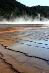 Grand Prismatic Spring (SammanthaSnowden) Tags: yellowstone national park wyoming geyser nature outdoors outside natural water forest hot spring river blue grand prismatic