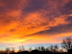 33/365/7 (f l a m i n g o) Tags: project365 365days sunrise sky arvada colorado january 25th 2018 thursday