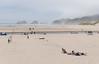 Cannon Beach (UrbanphotoZ) Tags: cannonbeach oregon pacific lowtide dune rocks families kite beachgoers coast westcoast