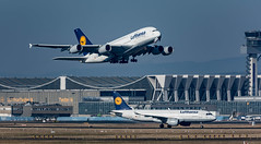 Auf wiedersehen!..... (Aleem Yousaf) Tags: flughafen frankfurt airport plane spotting airplane aircraft fra germany nikon d810 aviation avgeek photography observation deck zeppelinheim prime neuisenburg daimi lufthansa airbus a380 take off daiui a320