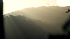 sunrise (Bernal Saborio G. (berkuspic)) Tags: tropicalrainforest sunrise fog mist sunrays