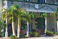 Key West (Florida) Trip 2017 0091Ri 4x6 (edgarandron - Busy!) Tags: florida keys floridakeys keywest butterflyhouse keywestbutterflyandnatureconservatory