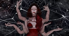[dani] Arachnid Hierarchy (Dani Bravin (Hawksy78 Resident)) Tags: aiitheuglybeautiful aiithedevil storybook cureless vixnirvana aurynlmari theepiphany theseasonsstory runawayhair runaway cerberusxing izzies izziebutton spiders arachnid webs bento maitreya empire lelutka halfdeer accessories amarabeauty art blog blogger clothing eyeappiers fantasy gizseorn hair littlefish mesh pets photography secondlife shinyshabby spiderwebs tattoo