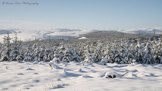 Winter Wind Farm