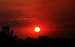Uruguaiana (Eduardo Amorim) Tags: pôrdosol poente entardecer poniente atardecer sunset tramonto sonnenuntergang coucherdesoleil crepúsculo anoitecer uruguaiana riograndedosul brésil brasil sudamérica südamerika suramérica américadosul southamerica amériquedusud americameridionale américadelsur americadelsud brazil eduardoamorim