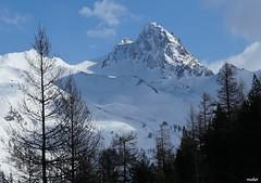 Le sommet du Mont Viso 3 841 m (Missfujii) Tags: