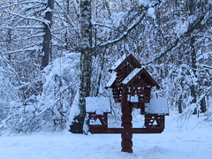 Let's feed birds! (VERUSHKA4) Tags: canon europe russia moscow city ville vue view cityscape landscape nature winter season hiver park kuskovo february birdhouse roof house trunk neve neige brown branch bough wood wooden object