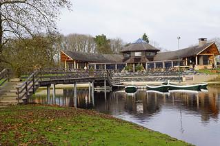Vroeg natuurverschijnsel in park Kienehoef Sint-Oedenrode