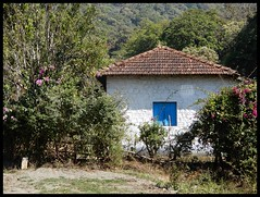 Old Estate Stone Buildings (Indianature st2i) Tags: teaestatebuildings valparai anamalais anamallais anamalaitigerreserve westernghats tea shola rainforest nature indianature 2018 january february tamilnadu india life wildlife plantation forest people estate