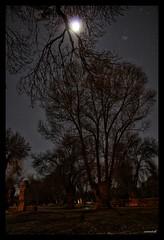 Alumbrando mi camino #Ávila (cristinatiad) Tags: ávila night moon nocturnas stars parques winter