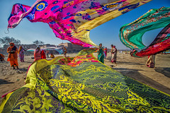 Indian Abstract (Harshal Orawala) Tags: india 121clicks harshalorawala saree colors vrindavan holi abstract lady