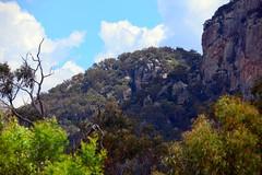 LOX_3563 (LoxPix2) Tags: australia nsw tenterfield bluffrock scenery landscape loxpix lookout mountains