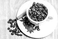 ROASTED COFEE   _MG_2435 (photo.bymau) Tags: bymau canon 7d serie cafe cofee stuido indoor test café cup tasse