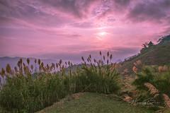 _U1H7091.0217 Bản Dọi,Tân Lập,Mộc Châu (HUONGBEO PHOTO) Tags: sunrise sky highland outdoor mountains reedsglass mộcchâu tânlập bảndọi view countryside vietnamlandscape