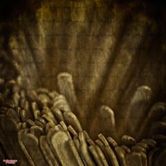 When Things Appear The Same (MBates Foto) Tags: aged ambientlight availablelight existinglight foodandbeverage indoors macro nikkorlens nikon nikond810 sepia stirsticks textures wood spokane washington unitedstates 99203