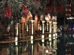 Makadi Palace 2018-02-16 (andreas-h) Tags: makadi egypt schnorcheln reise ägypten