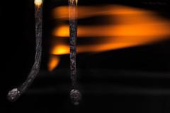 🎵la lala la🎶 (Prab Bhatia Photography) Tags: macromonday flame macro mm matchstick