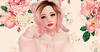La vie en rose (Kuro C) Tags: pink cute rose roses kawaii desu asian kuma teddy pastel