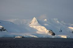 Brown_2017 12 11_3128 (HBarrison) Tags: harveybarrison hbarrison antarctica antarcticpeninsula paradiseharbor brownstation arctic antarctic arcticantarctic