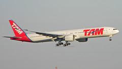 777-300 TAM PT-MUB (Rodrigo Durighello) Tags: 777300 777 ptmub tam boeing sbgr
