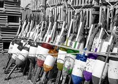 Rainbow Buoys (lindamary22) Tags: buoy buoys markers masts lobster traps wharf pier dock sea ocean water blackwhite