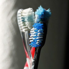 Time for New Brushes 03012018 (Orange Barn) Tags: brushes toothbrushes dentalhygiene bristles 118picturesin2018