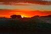 Werribee-Sunrise-DSC_7077 (fatima_suljagic) Tags: melbourne werribee wyndham beach photographer landscapes landscapephotography fineartprints artstudiomaja fatimasuljagicmelbourne australia canvasprints art