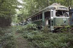 The Green Mile (Sean M Richardson) Tags: abandoned abandon train trolley graveyard greenline boston t naturetakesover woods trees details detail decay decayed derelict dof depth nature forest canon eos photoshop flickr texture textures old classic shadows contrast color colour colorful green black white yellow gold brown red bright light ruins explore exploration urbex usa outdoors perspective america sunlight sunshine softlight digital historic history leading lines vibrant