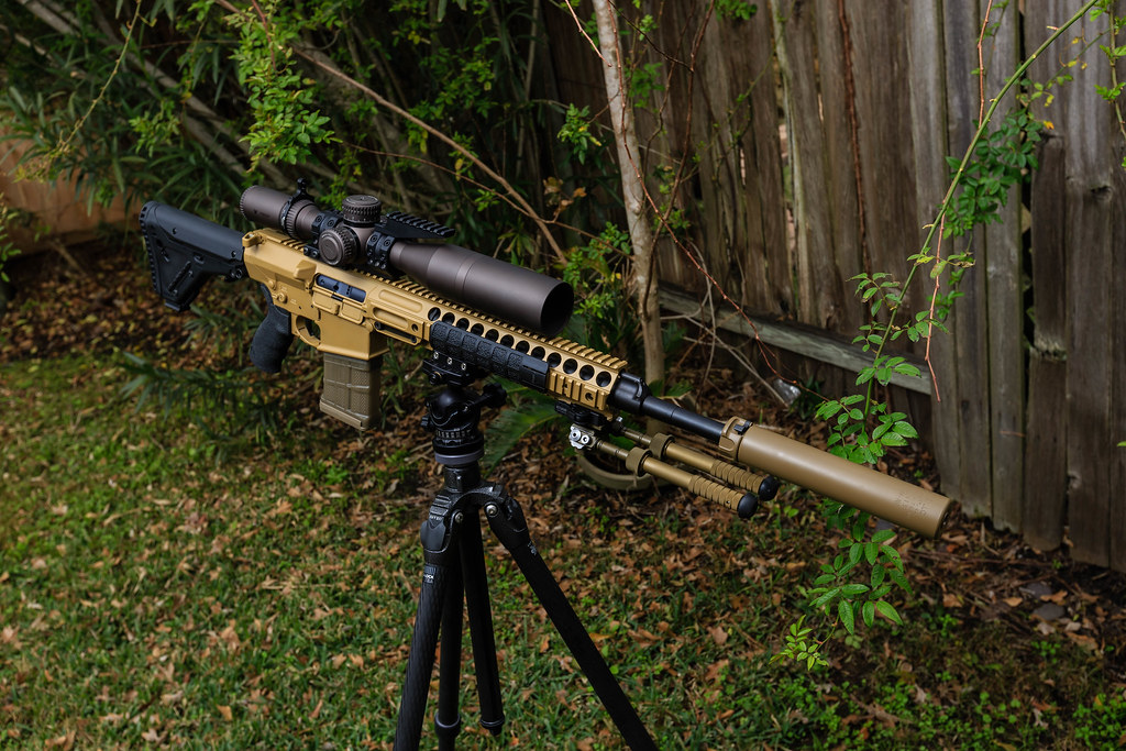 The World's Best Photos of dmr and sr25 - Flickr Hive Mind