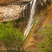 Another View of Calf Creek Falls